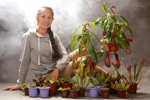Выращивание хищных растений 43