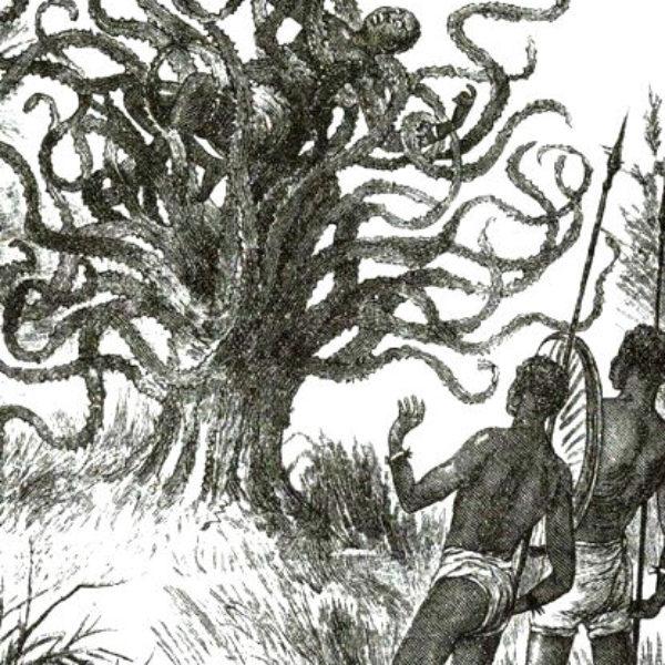 Дерево-змея – пожиратель собак