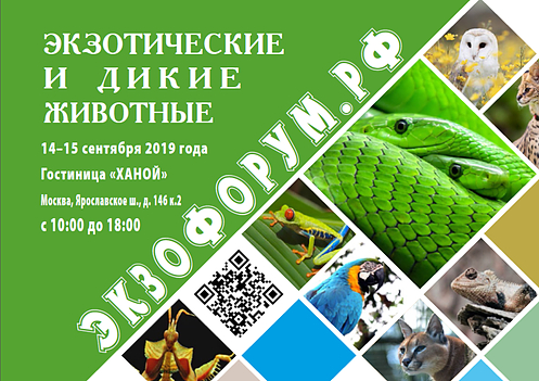 """14-15 сентября FLOWERRR.RU на """"Exoforum"""""""