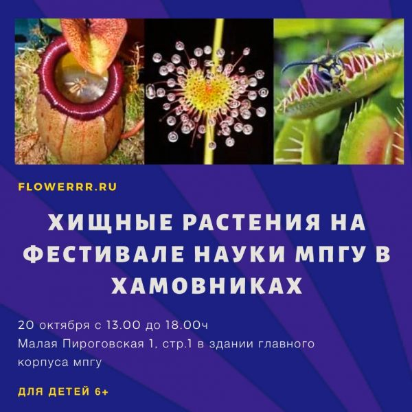 20 октября FLOWERRR.RU на фестивале науки в Хамовниках