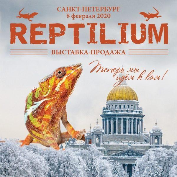 """8 февраля FLOWERRR на """"Рептилиум"""" в Санкт Петербурге"""