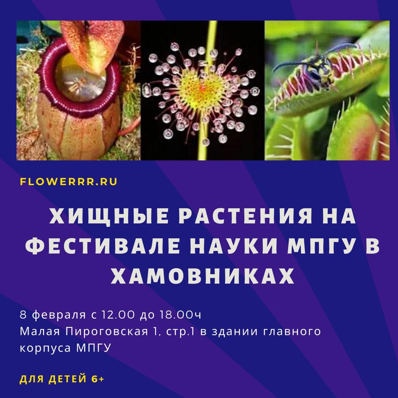 """8 февраля FLOWERRR.RU на """"Фестивале Науки"""" в Хамовниках"""